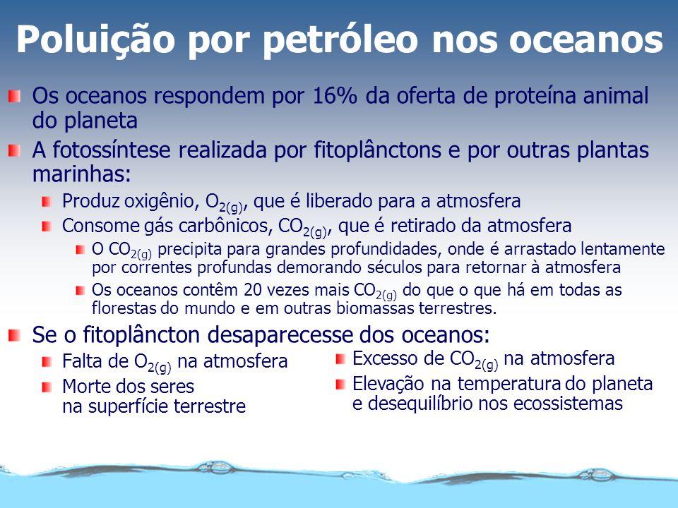 Poluição por petróleo nos oceanos