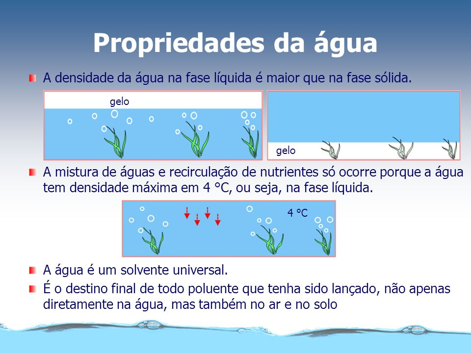Propriedades da água A densidade da água na fase líquida é maior que na fase sólida. gelo.