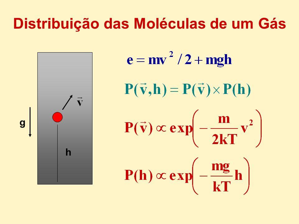 Distribuição das Moléculas de um Gás