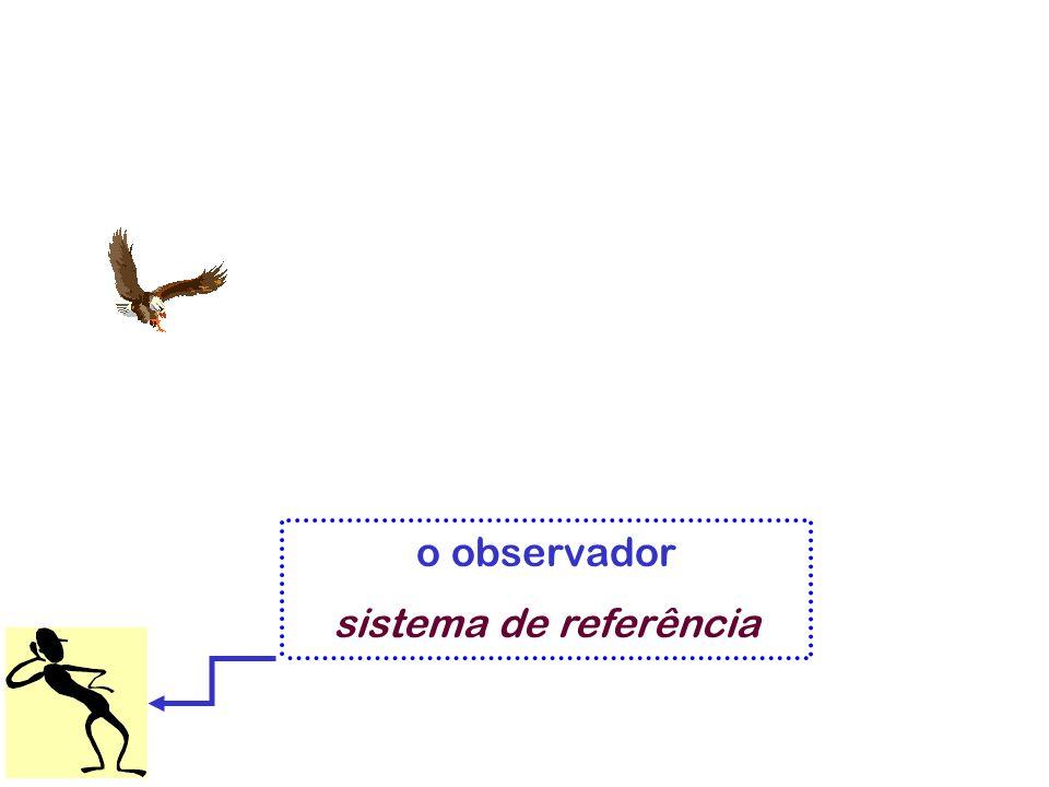 o observador sistema de referência