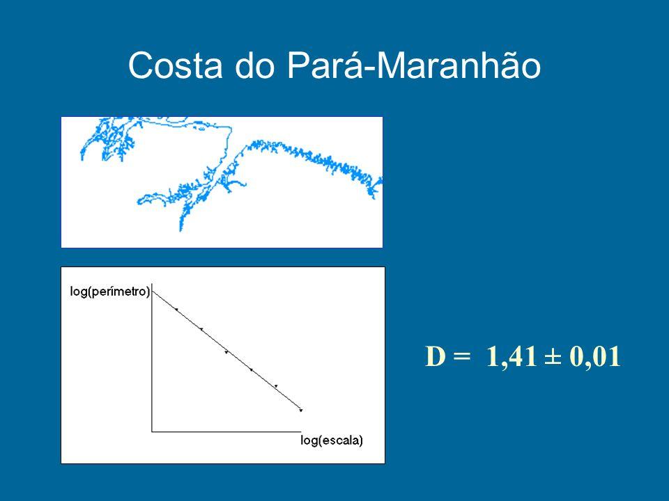 Costa do Pará-Maranhão