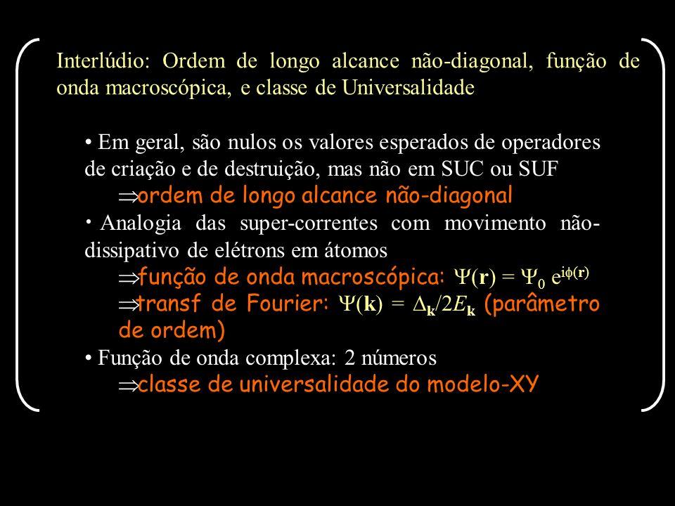 Interlúdio: Ordem de longo alcance não-diagonal, função de onda macroscópica, e classe de Universalidade