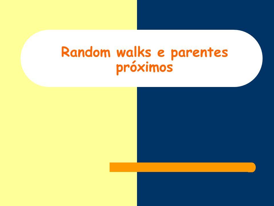 Random walks e parentes próximos