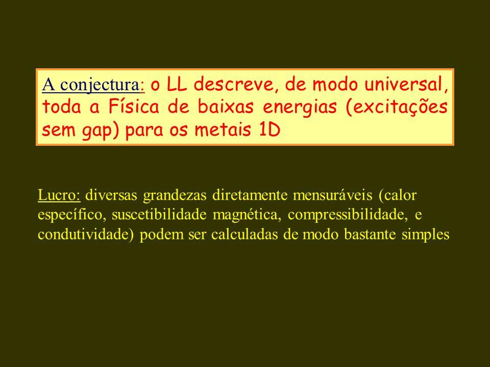 A conjectura: o LL descreve, de modo universal, toda a Física de baixas energias (excitações sem gap) para os metais 1D