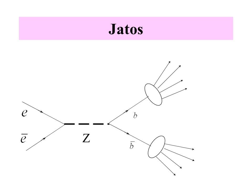 Jatos Z