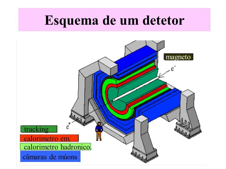 Esquema de um detetor magneto tracking calorimetro em.