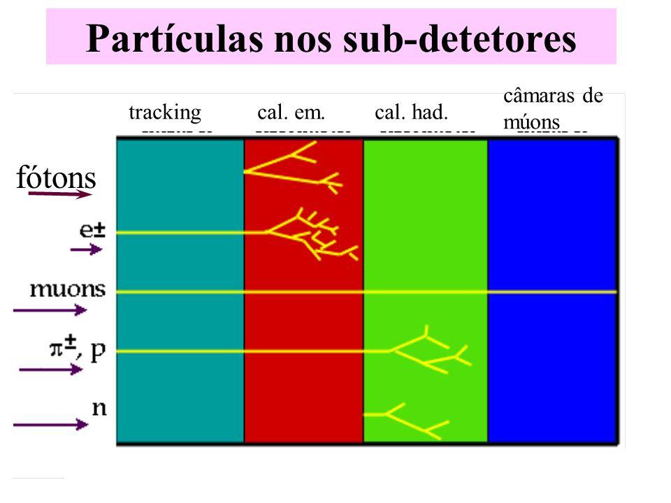 Partículas nos sub-detetores