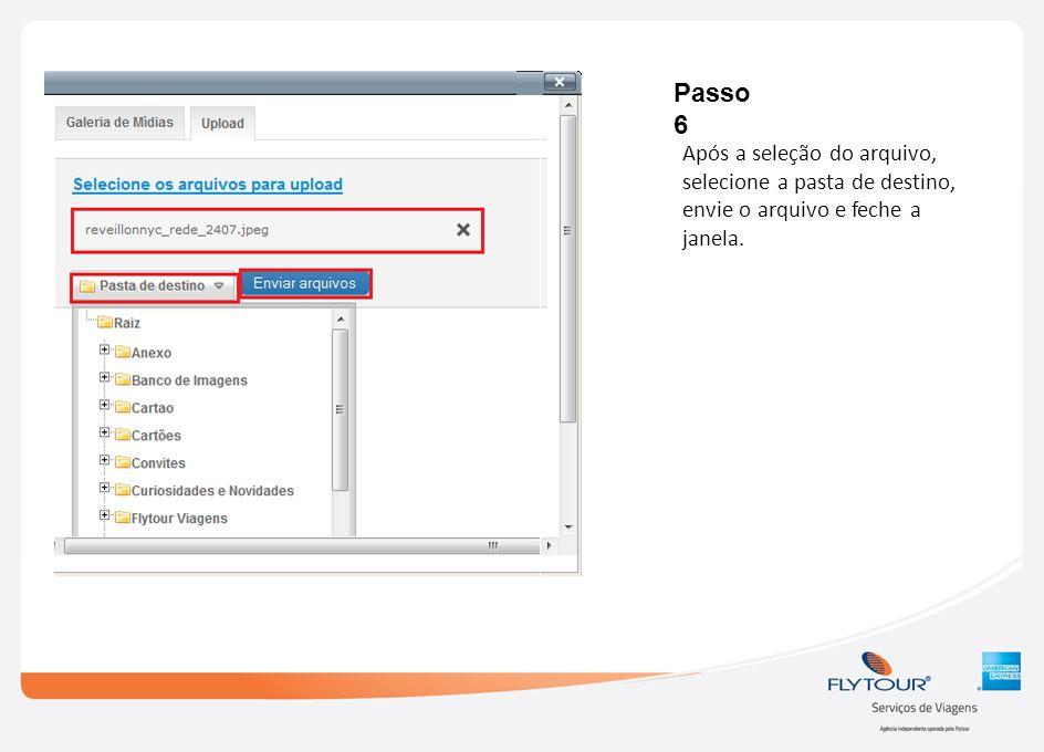 Passo 6 Após a seleção do arquivo, selecione a pasta de destino, envie o arquivo e feche a janela.