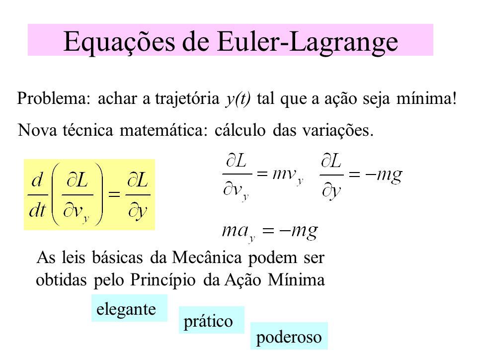 Equações de Euler-Lagrange