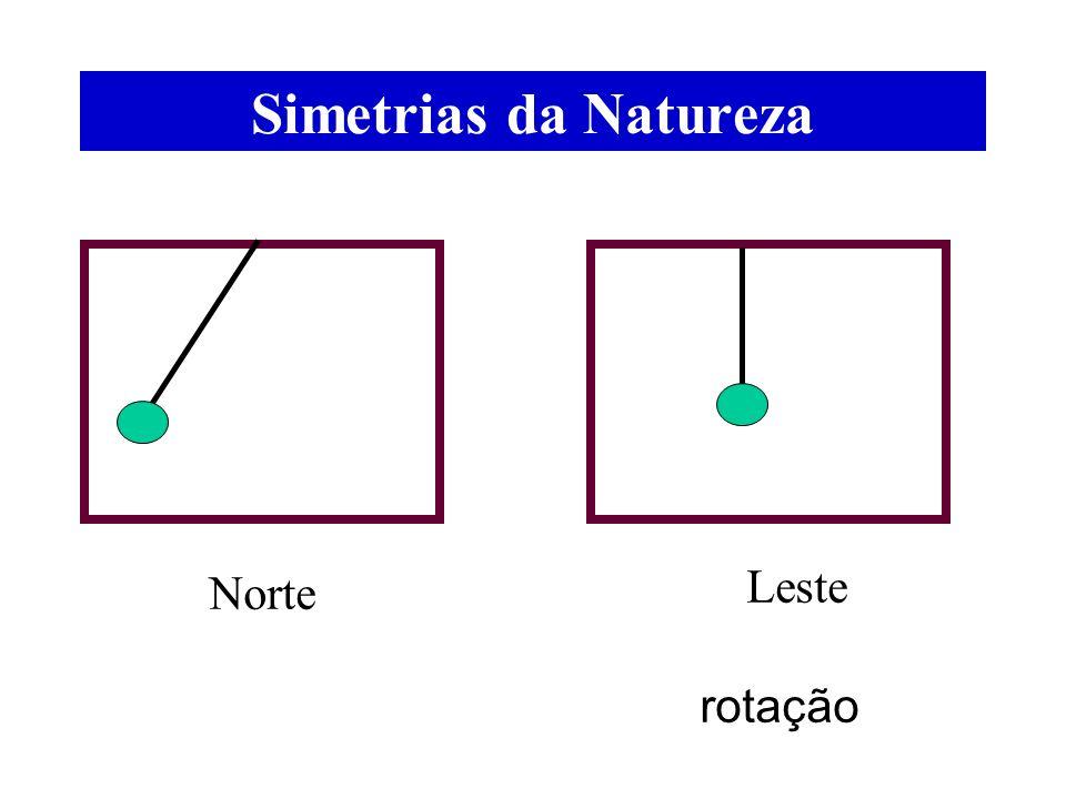 Simetrias da Natureza Norte Leste rotação
