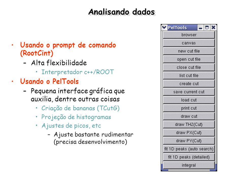 Analisando dados Usando o prompt de comando (RootCint)