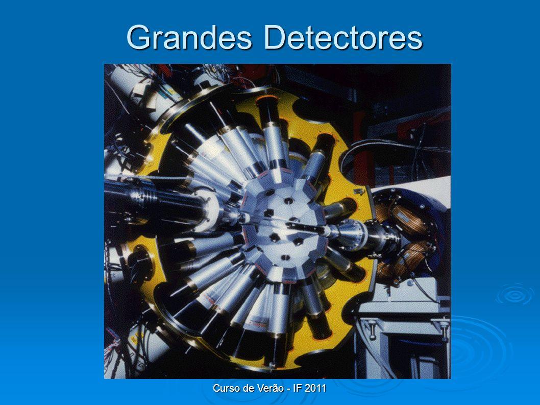 Grandes Detectores Curso de Verão - IF 2011