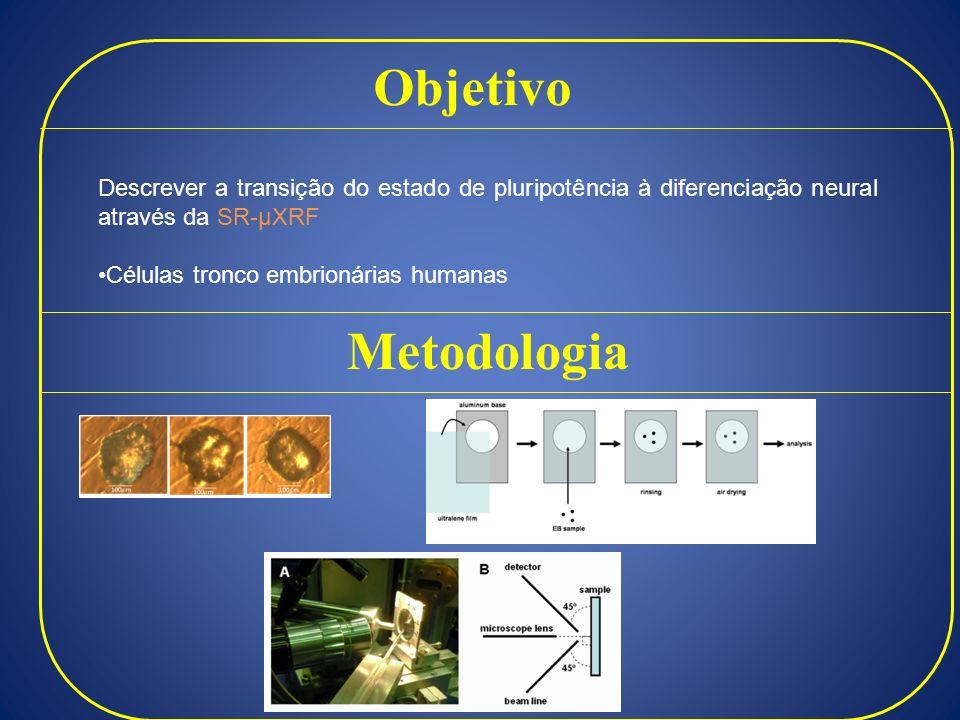 Objetivo Descrever a transição do estado de pluripotência à diferenciação neural através da SR-µXRF.