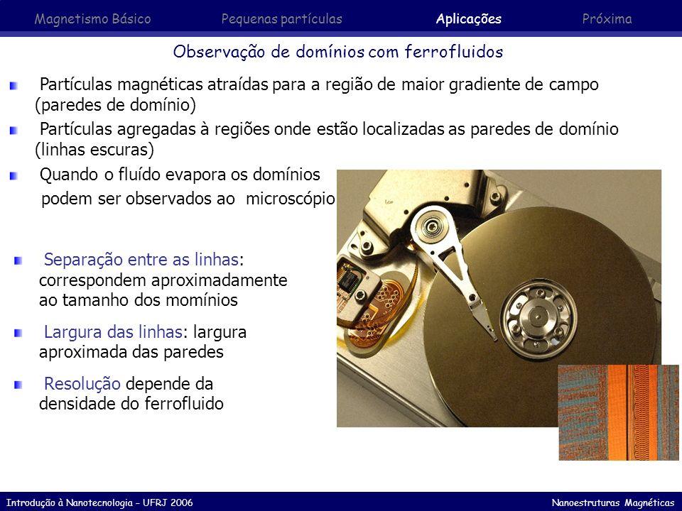 Observação de domínios com ferrofluidos
