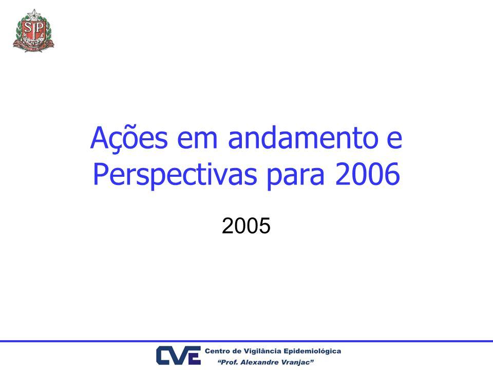 Ações em andamento e Perspectivas para 2006