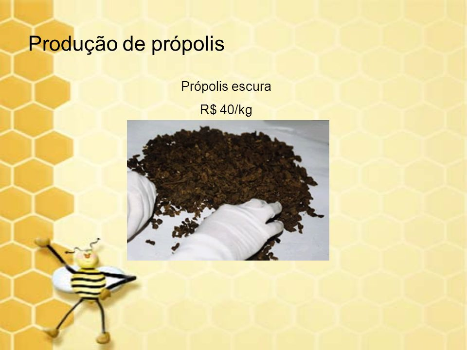 Produção de própolis Própolis escura R$ 40/kg