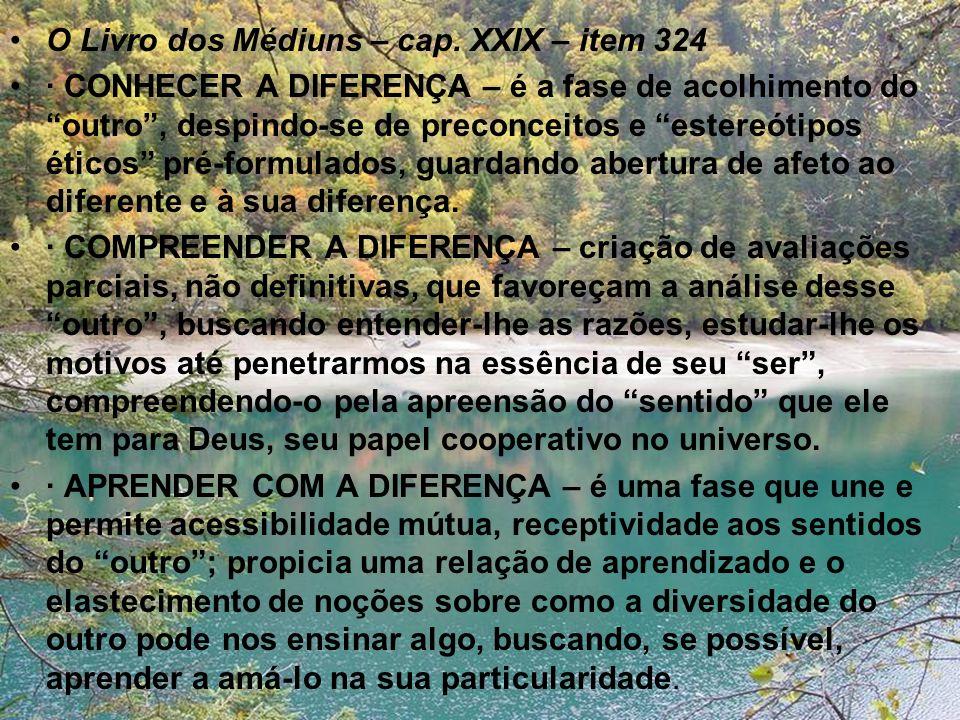O Livro dos Médiuns – cap. XXIX – item 324