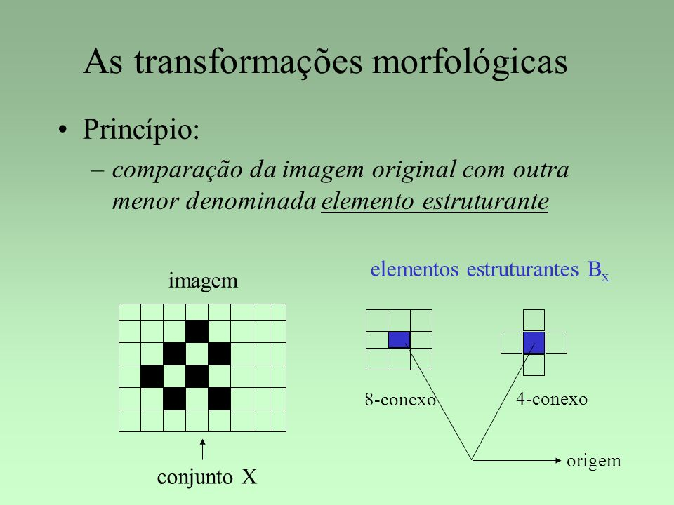 As transformações morfológicas