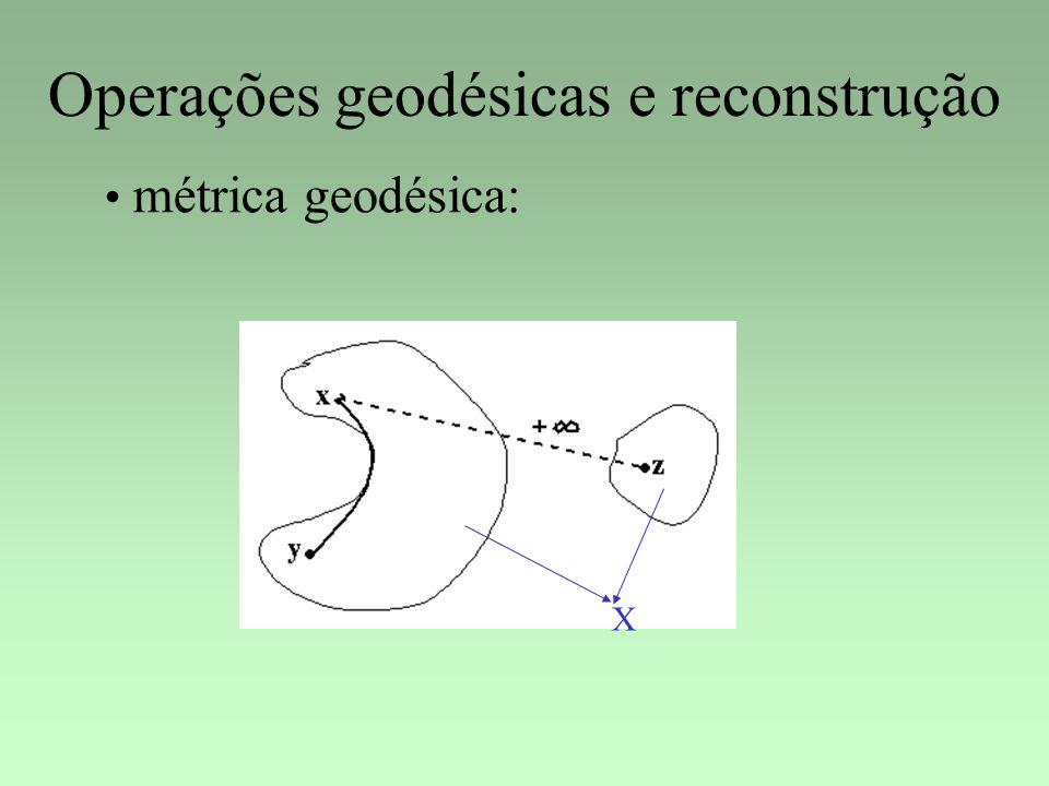 Operações geodésicas e reconstrução