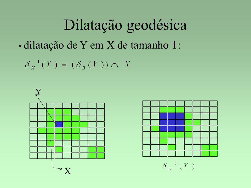 Dilatação geodésica dilatação de Y em X de tamanho 1: Y X 53
