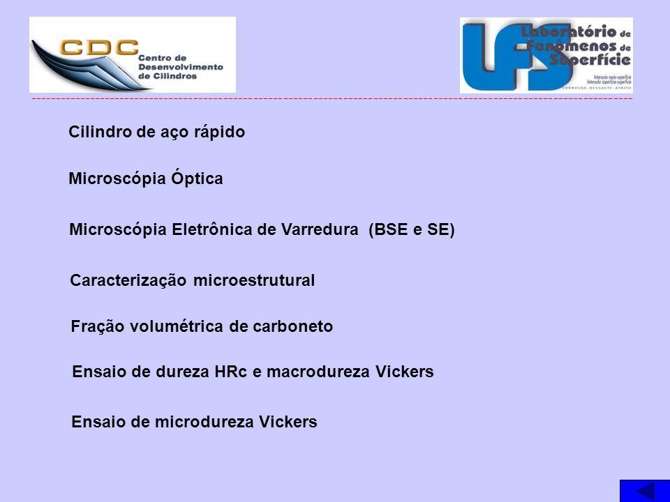 Microscópia Eletrônica de Varredura (BSE e SE)