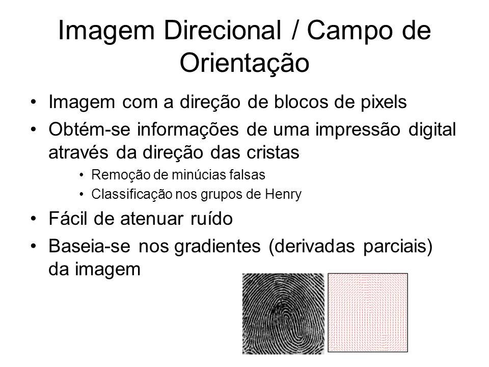 Imagem Direcional / Campo de Orientação