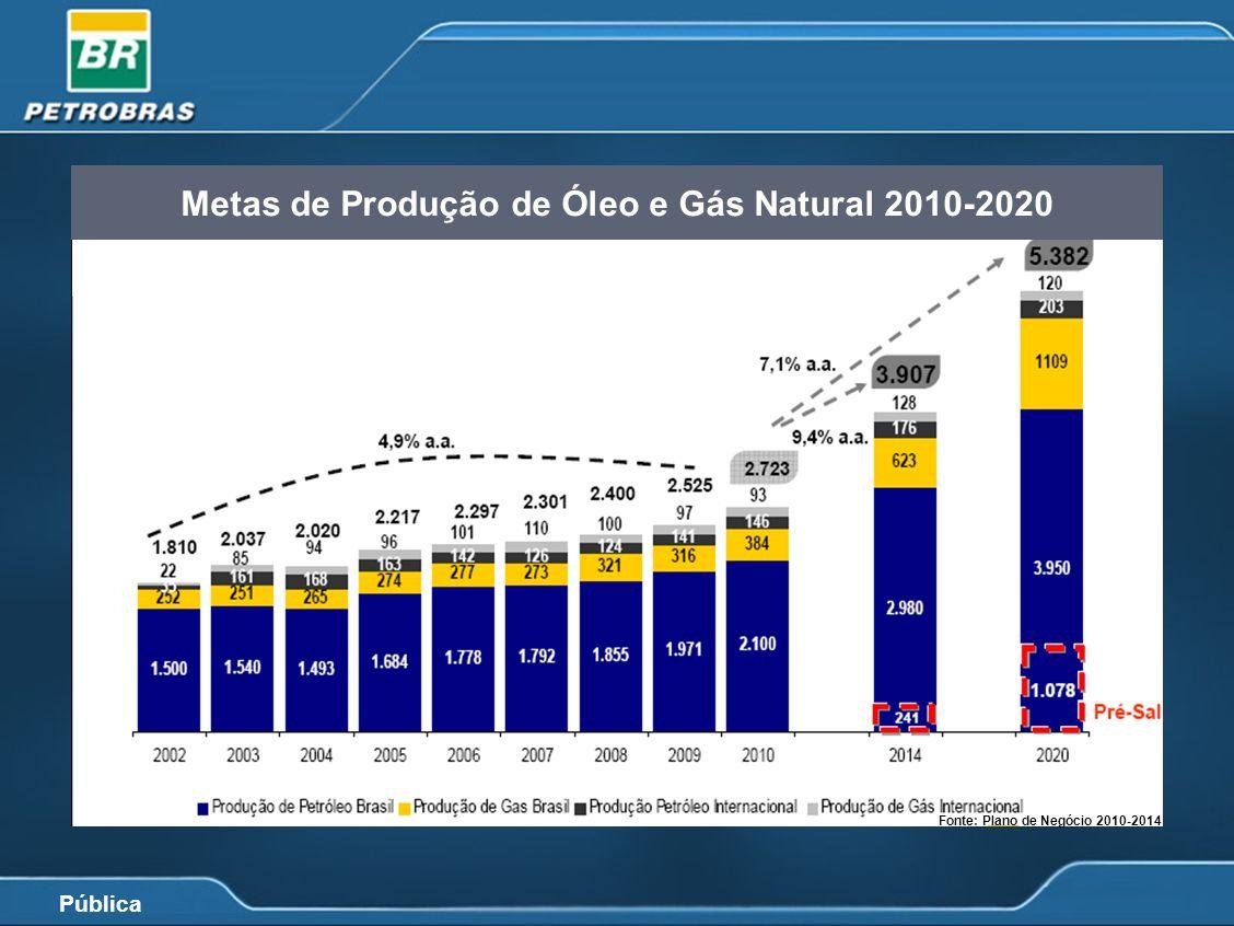 Metas de Produção de Óleo e Gás Natural 2010-2020