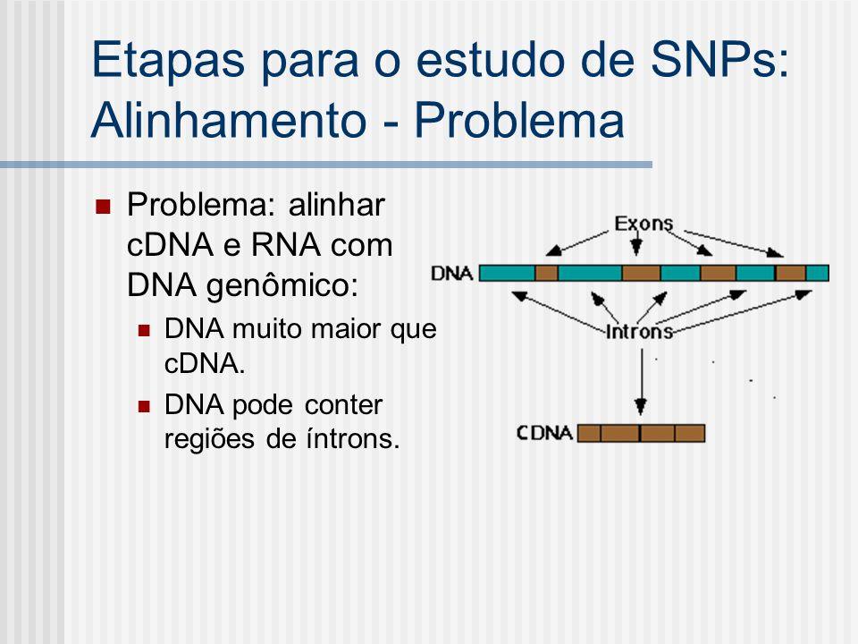Etapas para o estudo de SNPs: Alinhamento - Problema