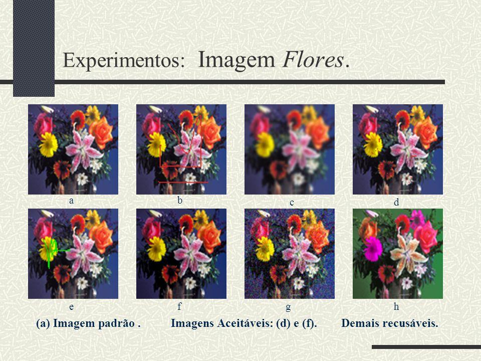 Experimentos: Imagem Flores.