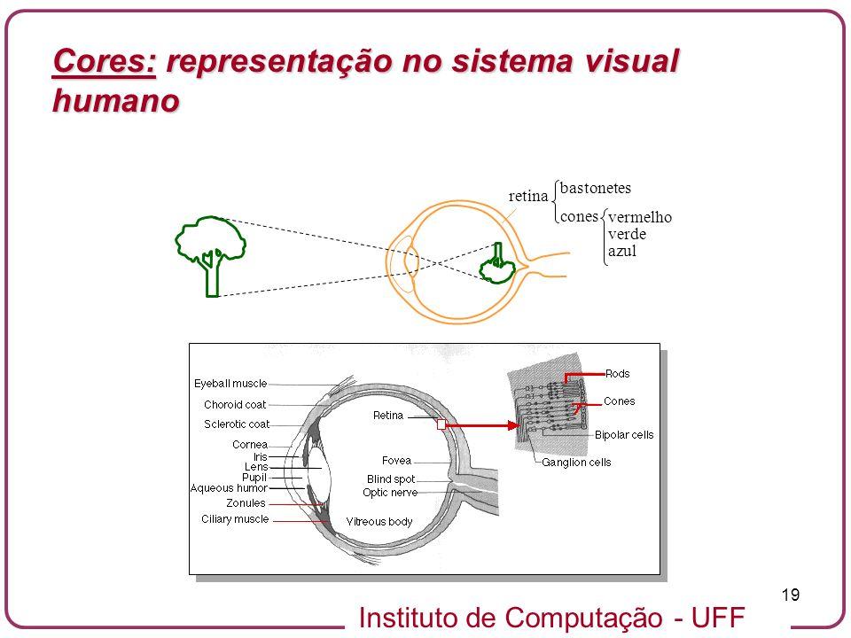 Cores: representação no sistema visual humano