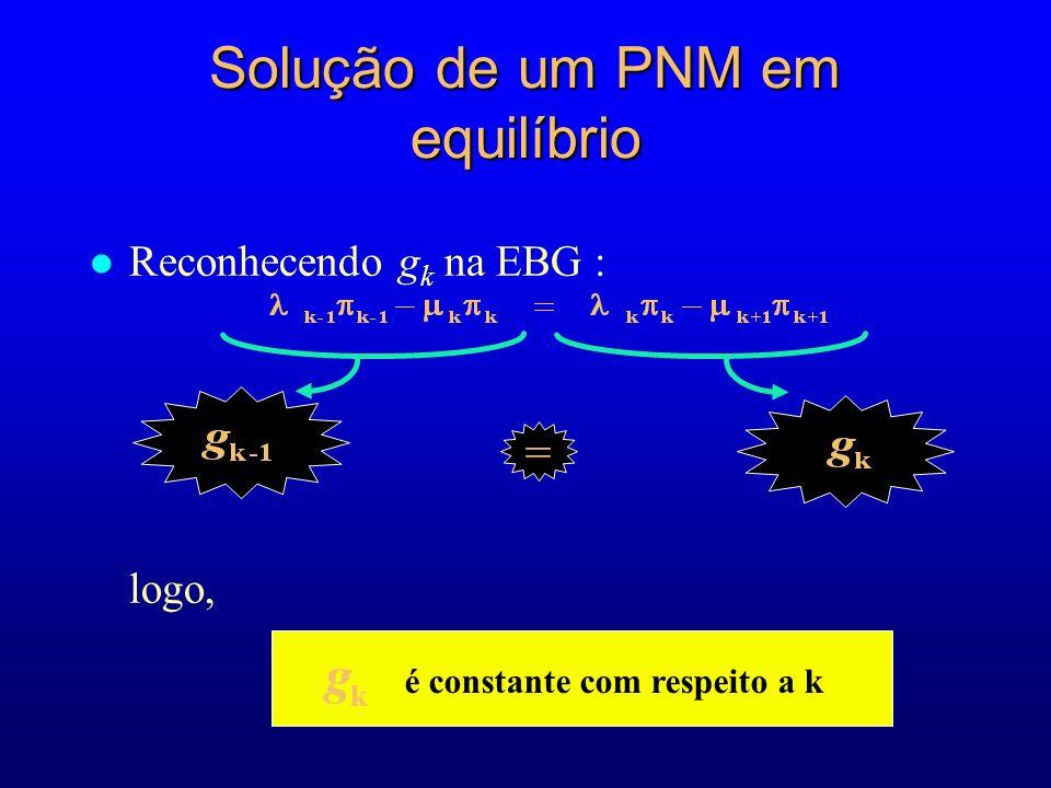 Solução de um PNM em equilíbrio