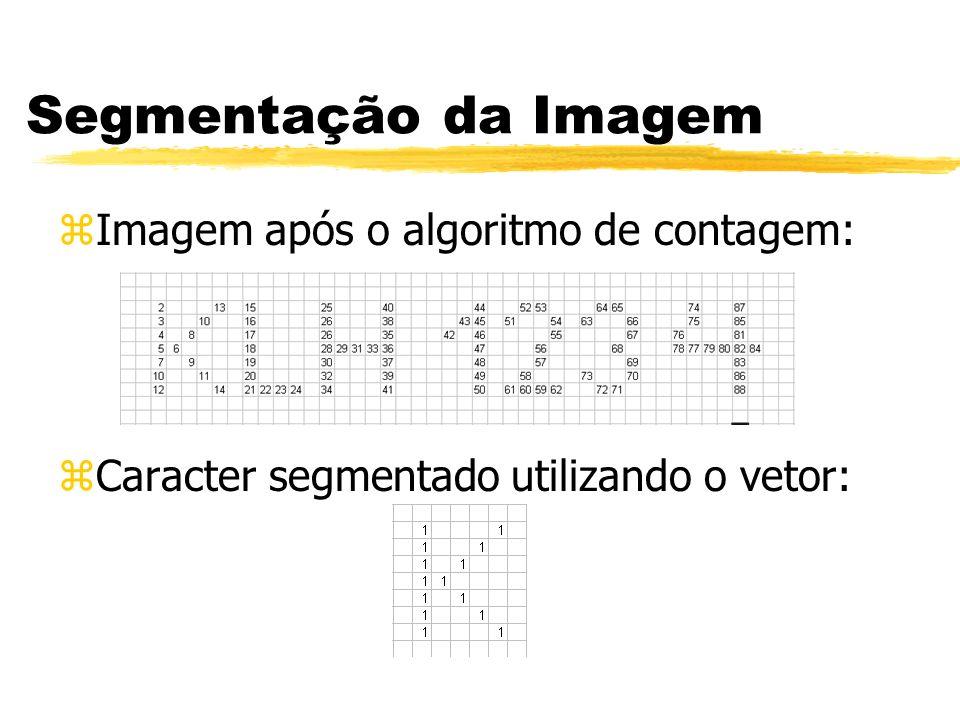 Segmentação da Imagem Imagem após o algoritmo de contagem:
