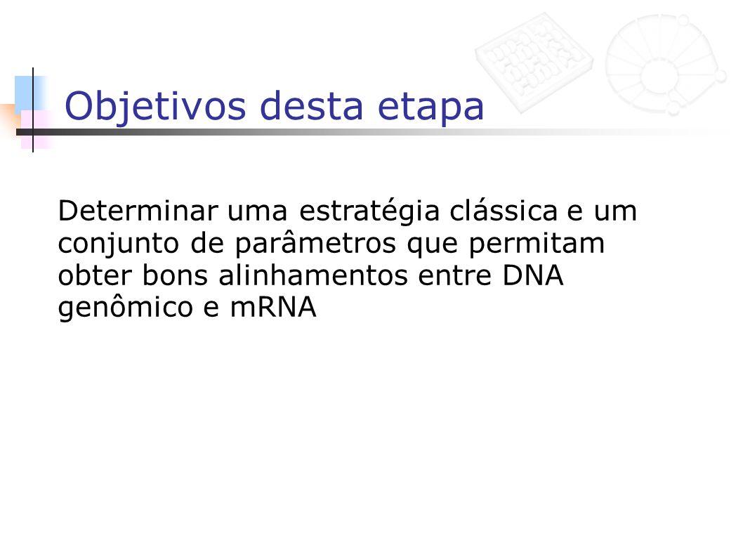 Objetivos desta etapa Determinar uma estratégia clássica e um conjunto de parâmetros que permitam obter bons alinhamentos entre DNA genômico e mRNA.