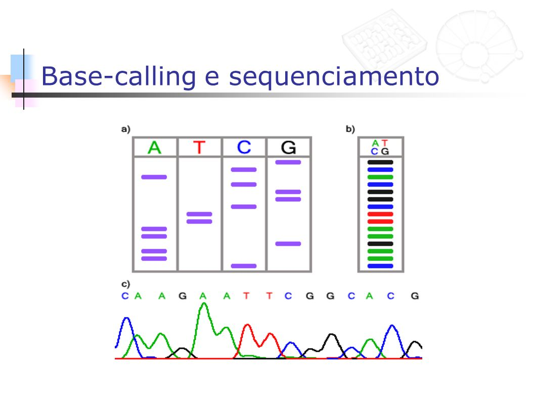 Base-calling e sequenciamento