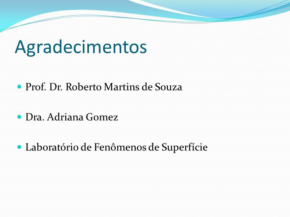 Agradecimentos Prof. Dr. Roberto Martins de Souza Dra. Adriana Gomez