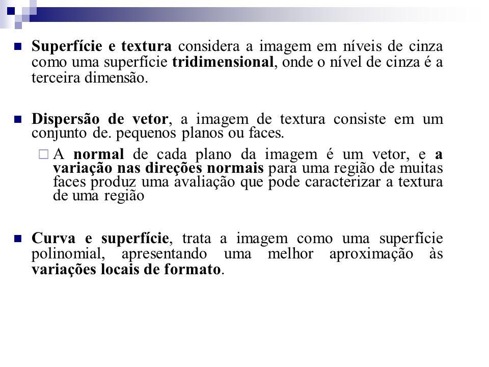 Superfície e textura considera a imagem em níveis de cinza como uma superfície tridimensional, onde o nível de cinza é a terceira dimensão.