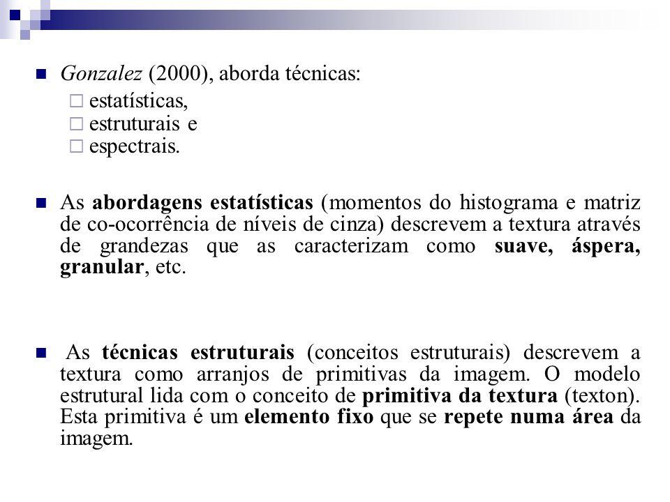 Gonzalez (2000), aborda técnicas: