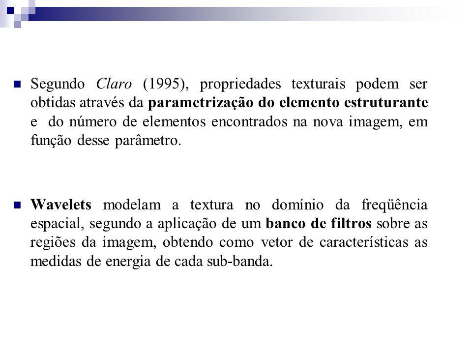 Segundo Claro (1995), propriedades texturais podem ser obtidas através da parametrização do elemento estruturante e do número de elementos encontrados na nova imagem, em função desse parâmetro.