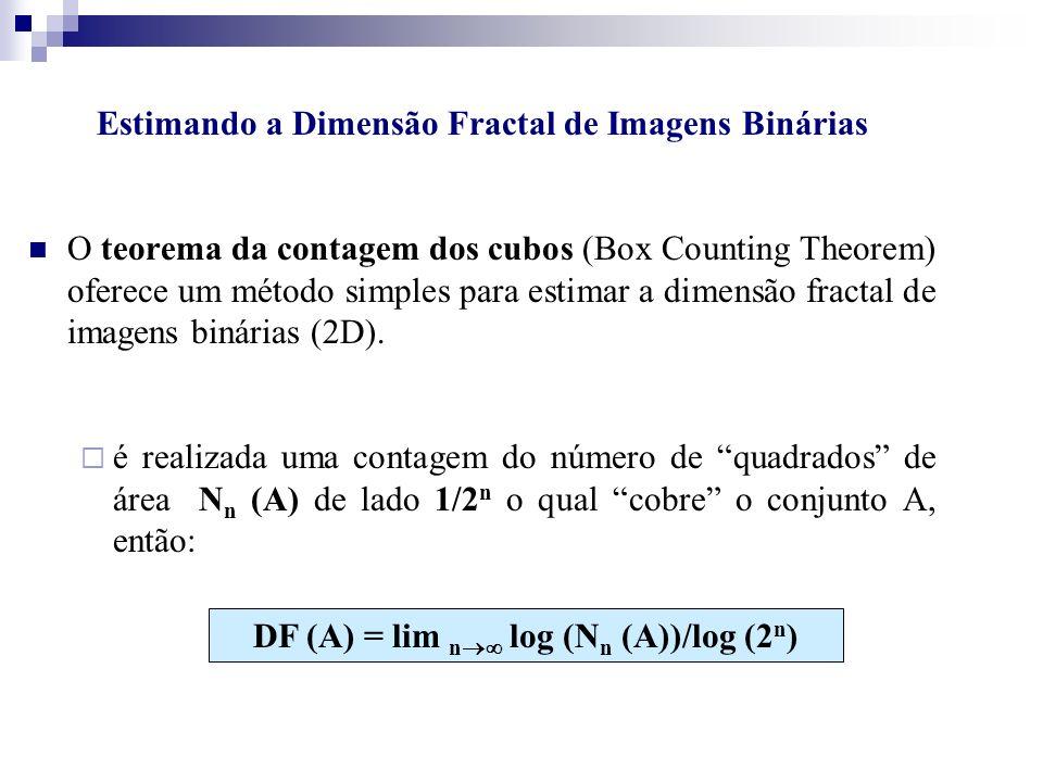 Estimando a Dimensão Fractal de Imagens Binárias