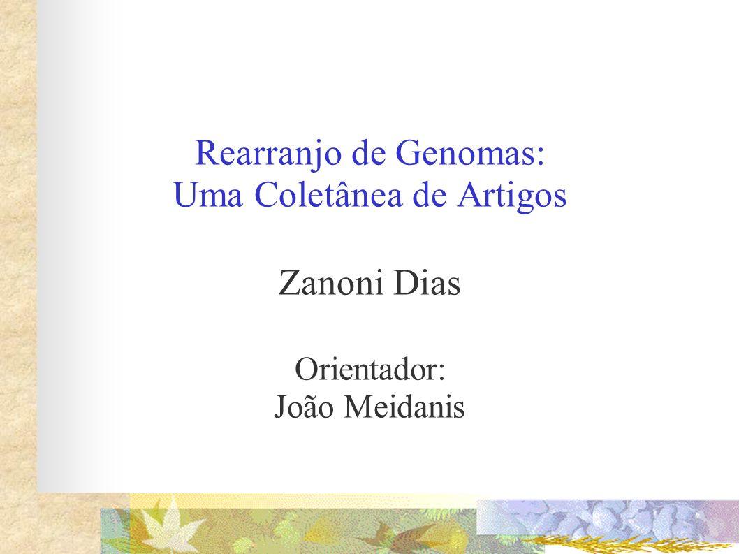 Rearranjo de Genomas: Uma Coletânea de Artigos