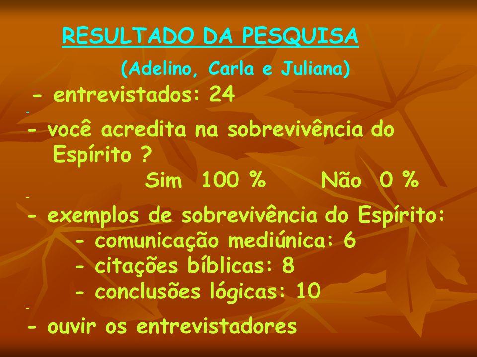 RESULTADO DA PESQUISA (Adelino, Carla e Juliana) - entrevistados: 24 - - você acredita na sobrevivência do Espírito .