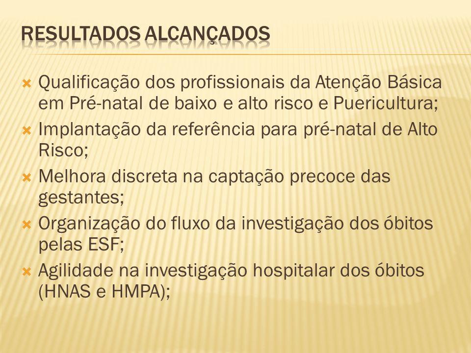 RESULTADOS ALCANÇADOS