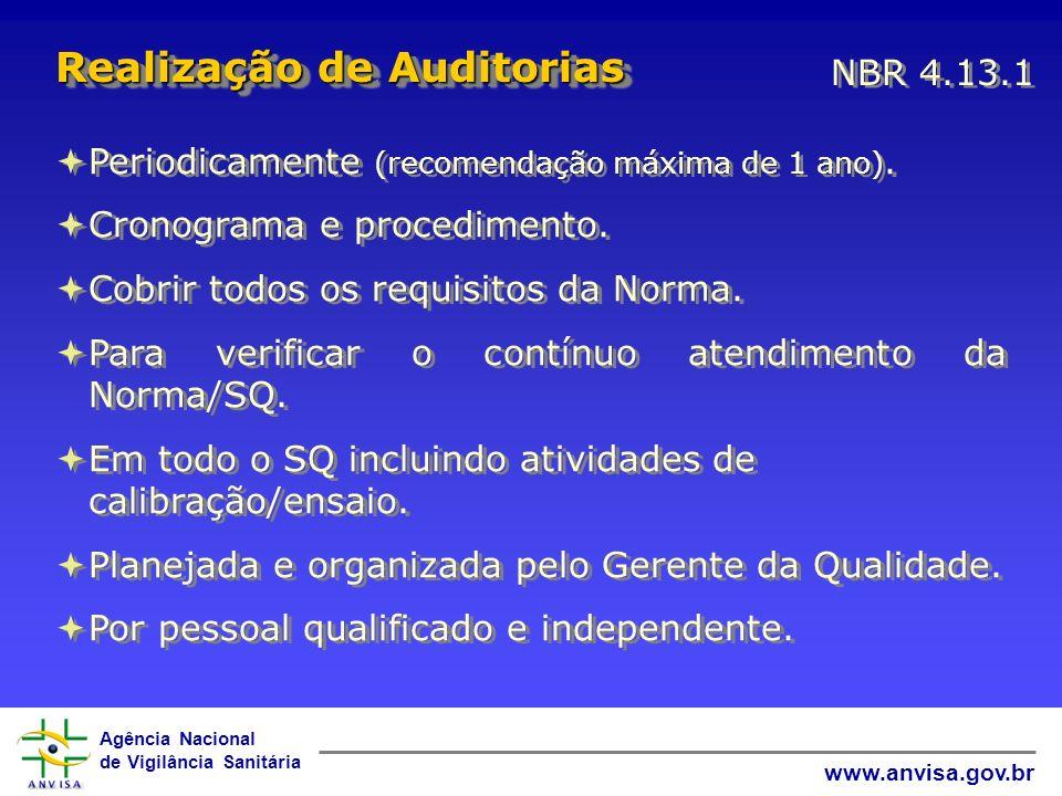 Realização de Auditorias