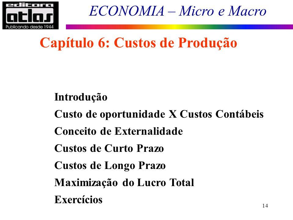 Capítulo 6: Custos de Produção