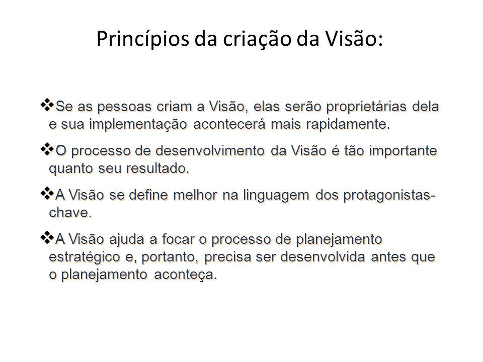 Princípios da criação da Visão: