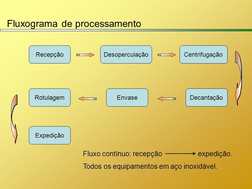 Fluxograma de processamento