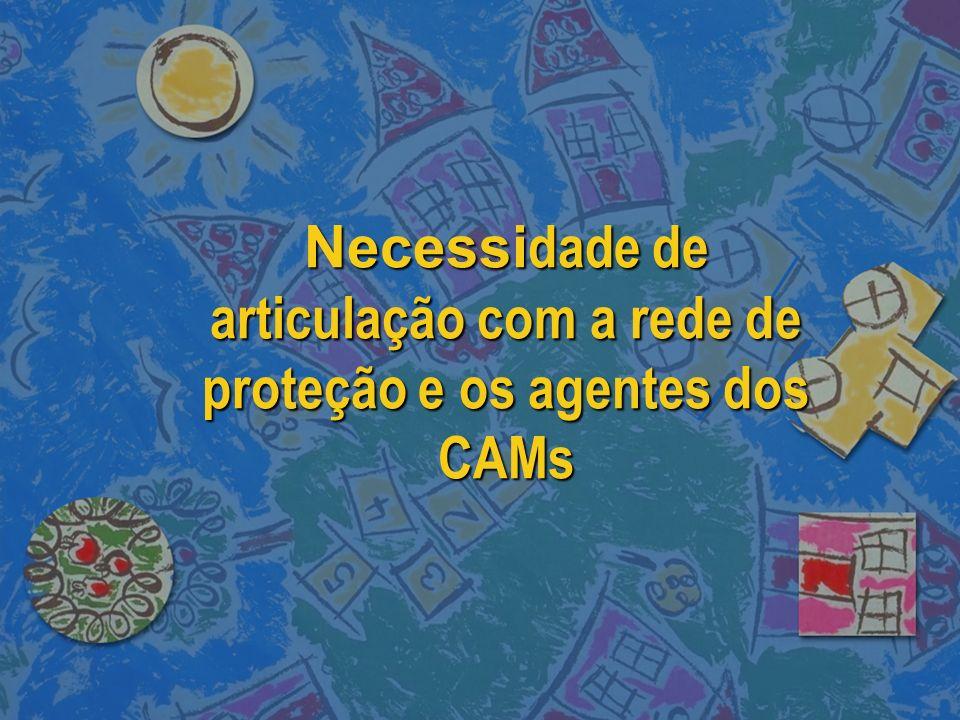 Necessidade de articulação com a rede de proteção e os agentes dos CAMs