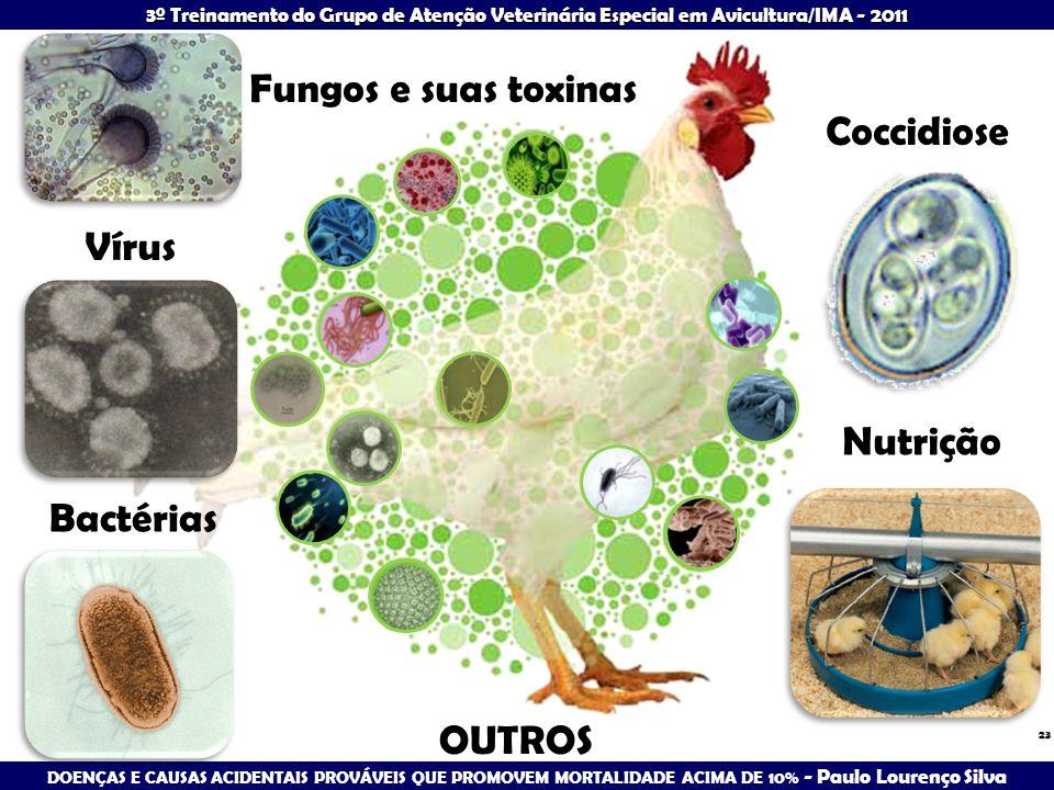 Fungos e suas toxinas Coccidiose Vírus Nutrição Bactérias OUTROS