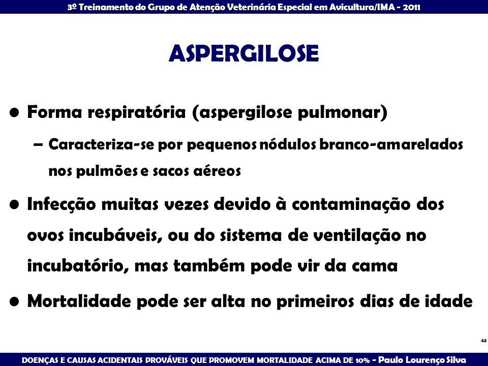 ASPERGILOSE Forma respiratória (aspergilose pulmonar)