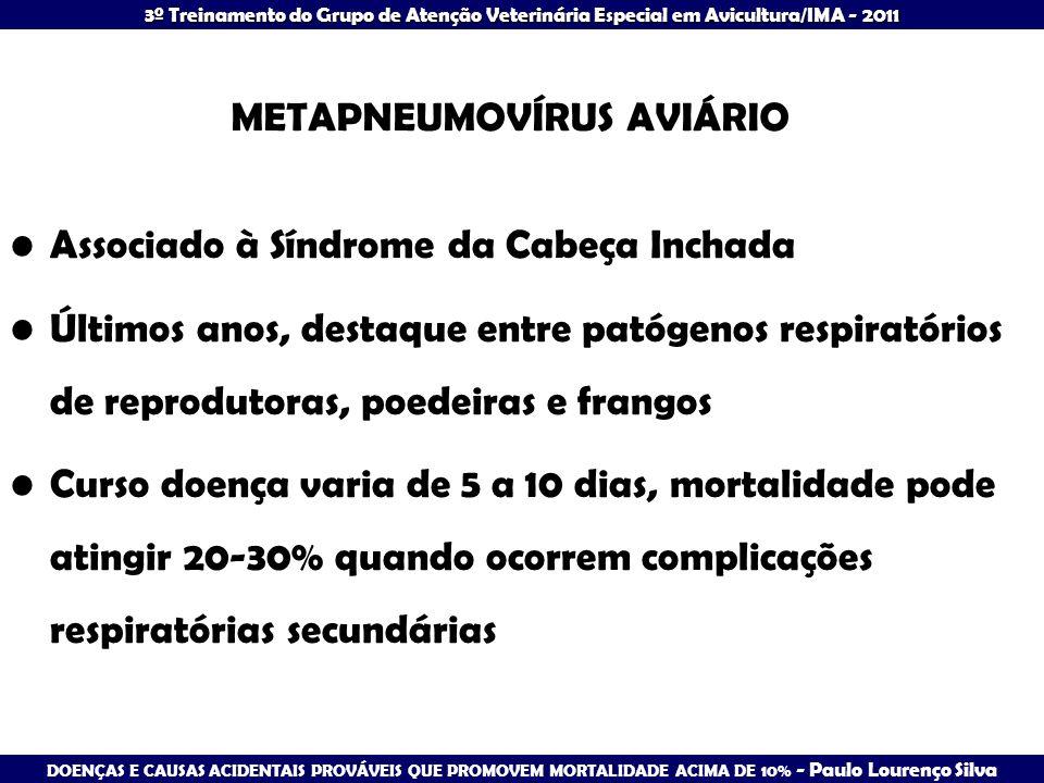 METAPNEUMOVÍRUS AVIÁRIO